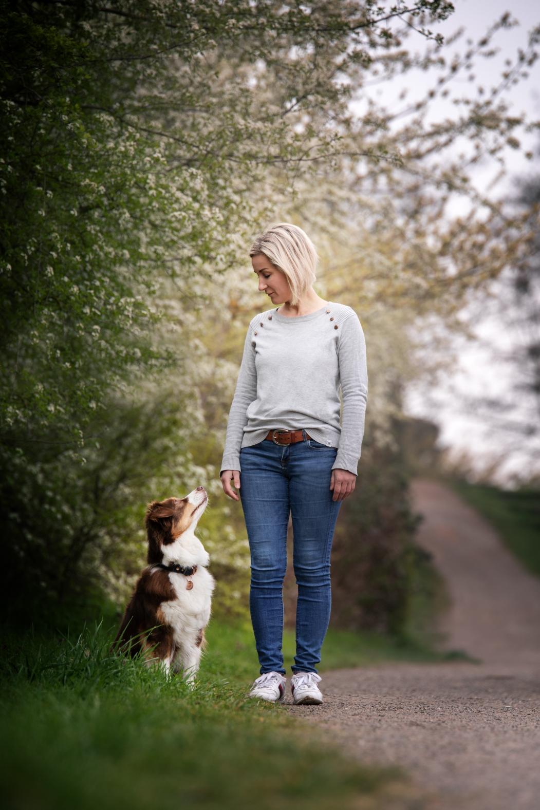 Dogwalking, Hundebetreuung, Urlaubsbetreuung, Tagesbetreuung für Hunde, Gassiservice Potsdam