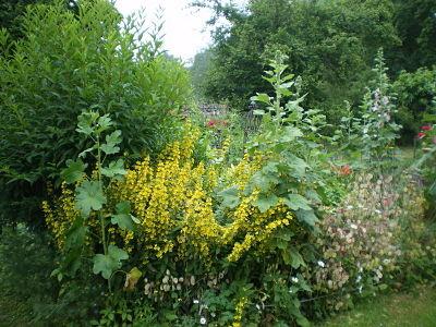 Jardin du gîte la Fontaine St Gervais - Aumont en Halatte - Oise