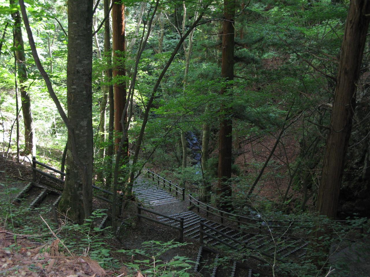 夏の三滝遊歩道