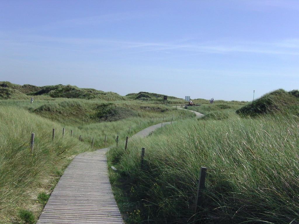 .. der Weg zum Strand
