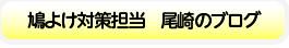 鳩よけ対策担当 尾崎のブログ