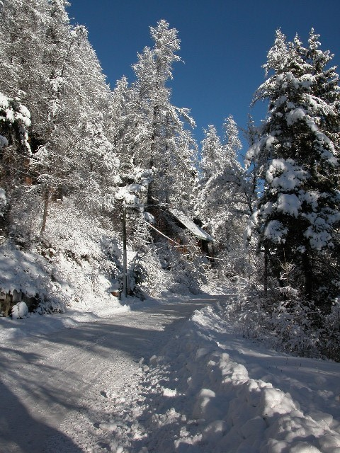 La route à Noel