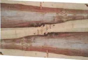 traumhafter Kerneschestamm eingelagert, © Ladenbau Berschneider, Deining
