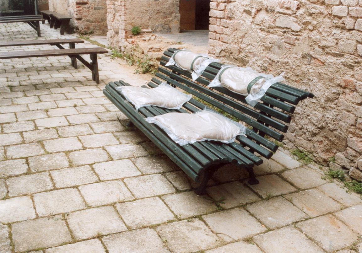 Bank der Erinnerung / Park Bench (with memory)
