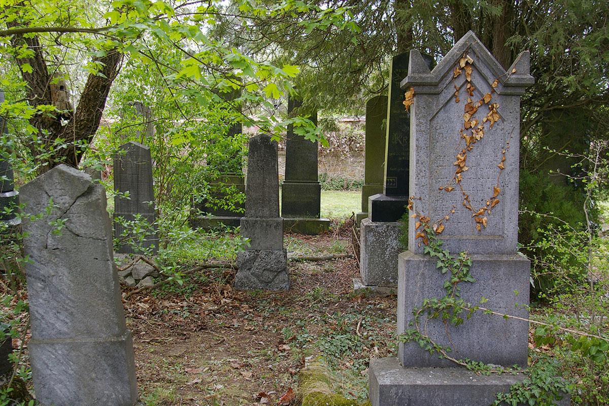 Horner Judenfriedhof: Führung mit Heide Manoutschehri