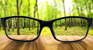 Per vedere cosa ci sta attorno a volte servono occhiali giusti