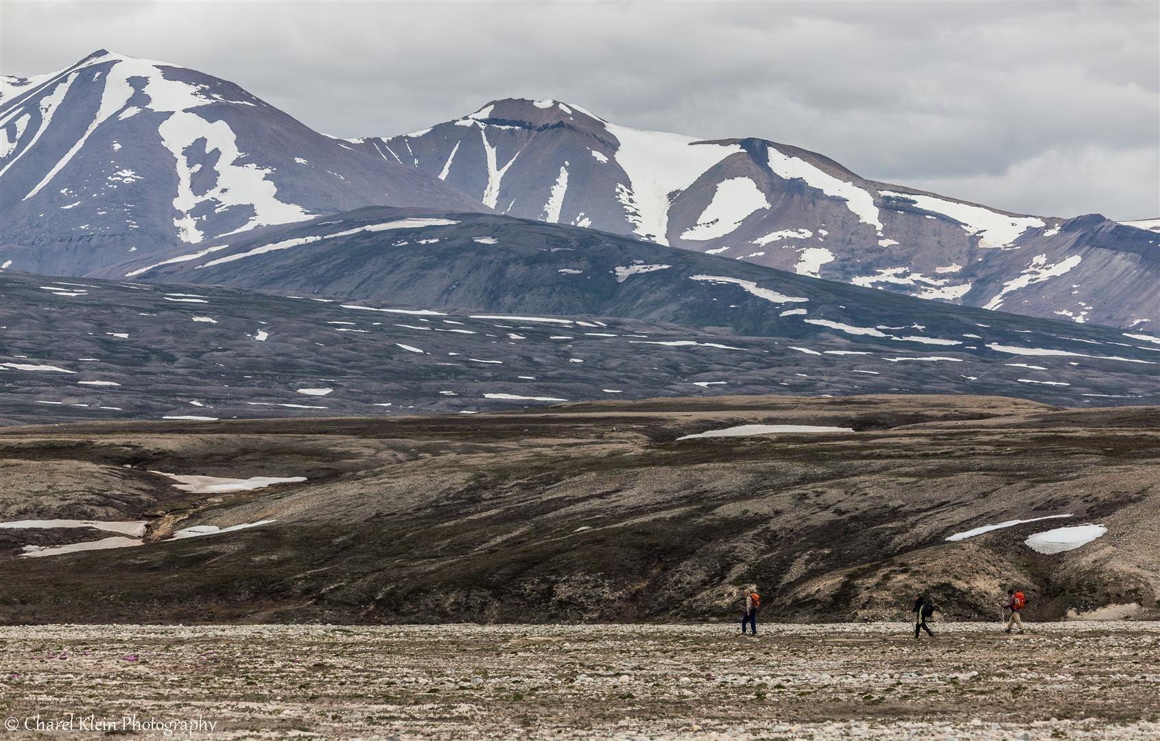 Tundra walk