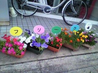 フリークの花たち