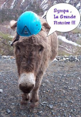Retour sur le plancher des ... ânes !