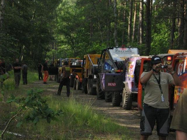 Anstellen im polnischen Wald