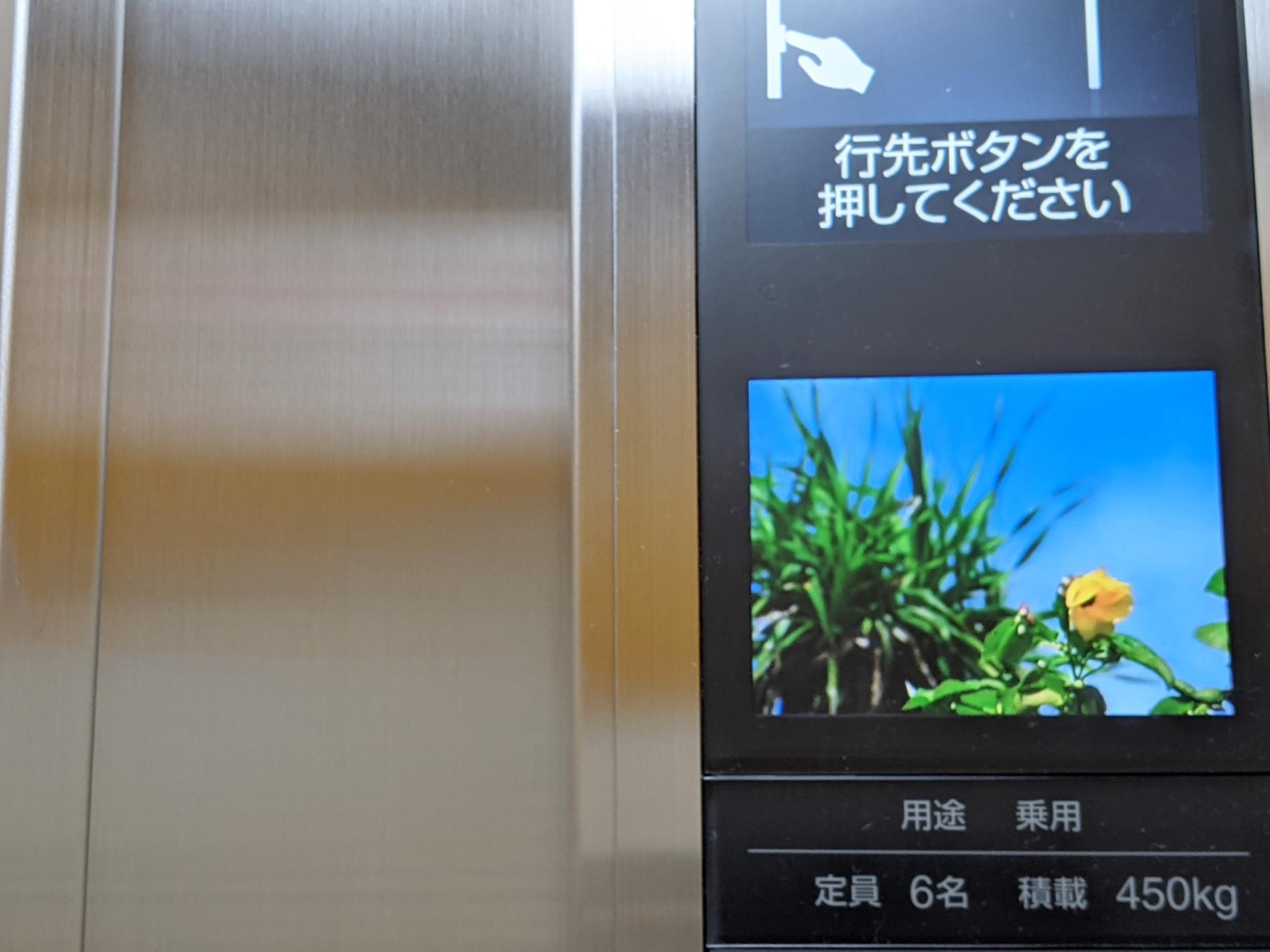 2号館のエレベーターリニューアルしました。