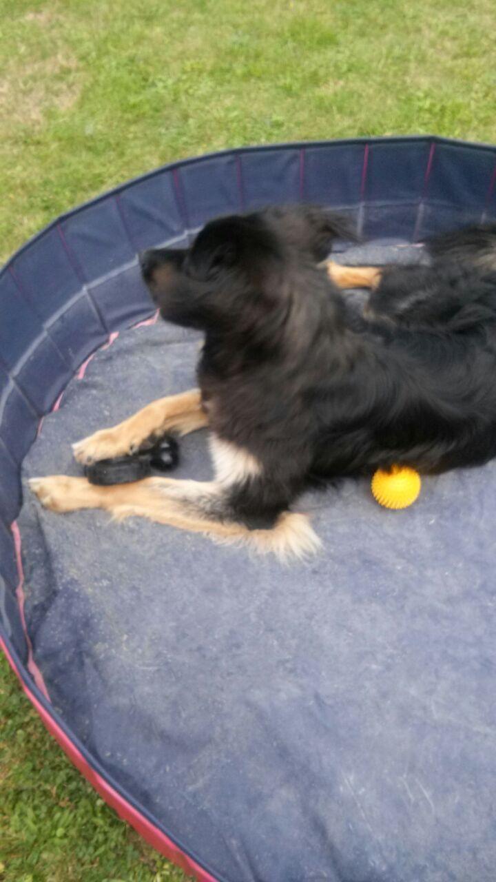 Eyck liebt seinen Pool