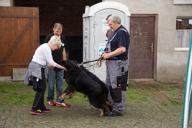Carry und Canis v. W.