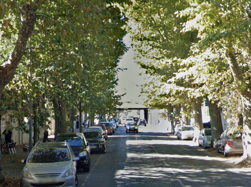 La Ville d'Arles organise une vaste campagne d'élagage en 2021