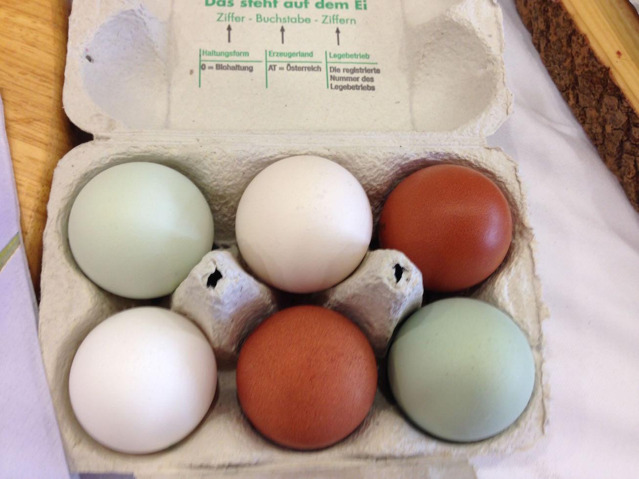 naturbunte Eier vom Sonnberg