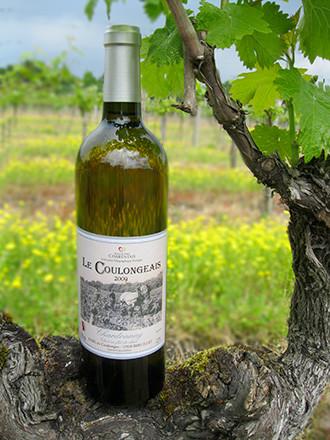 Chardonnay Vin de Pays Charentais Breuillet