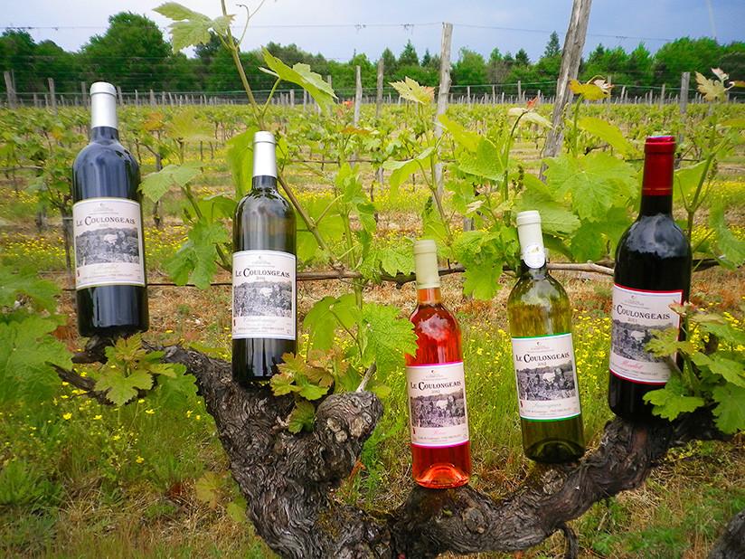 Le Coulongeais Vin de Pays Charentais