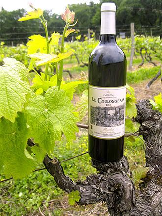 Merlot Vin de Pays Charentais Fût de chêne