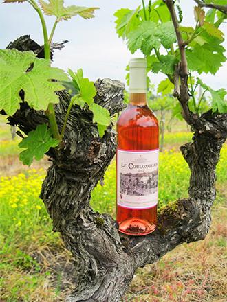 Rosé Vin de Pays Charentais Le Coulongeais