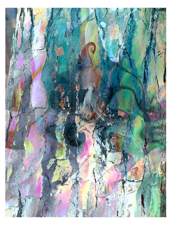 Aufsteigend (2), 2017, Alu-Dibond, 80 x 60 cm