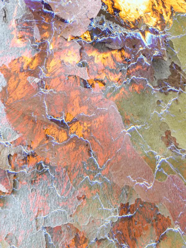 gefrierende Hitze, 2018, c-print