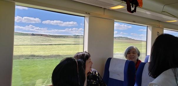見渡す限りの牧草地?上手く撮れませんでしたが、スペインには風力発電の風車が沢山ありました