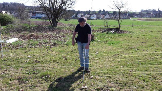 Wolfgang Weber gibt Tipps zum Zaunbau. Foto: Isa Rössner