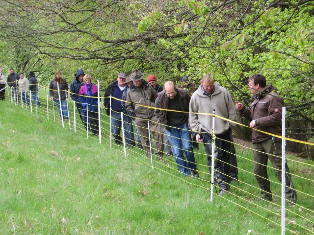 Der aufgebaute Zaun wird gemeinsam abgegangen und begutachtet. Bild: Wolfgang Weber