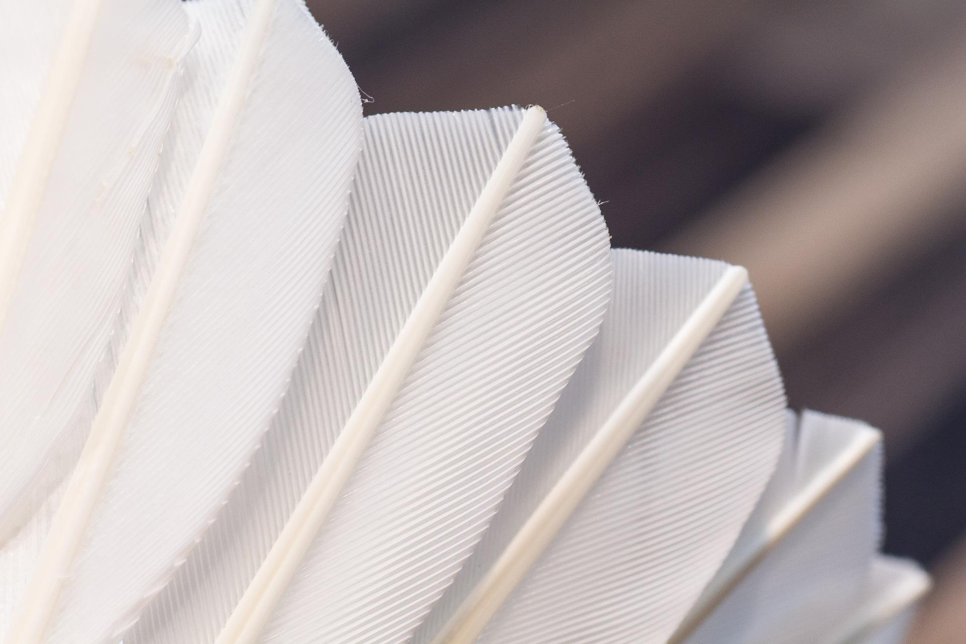 badminton castrop