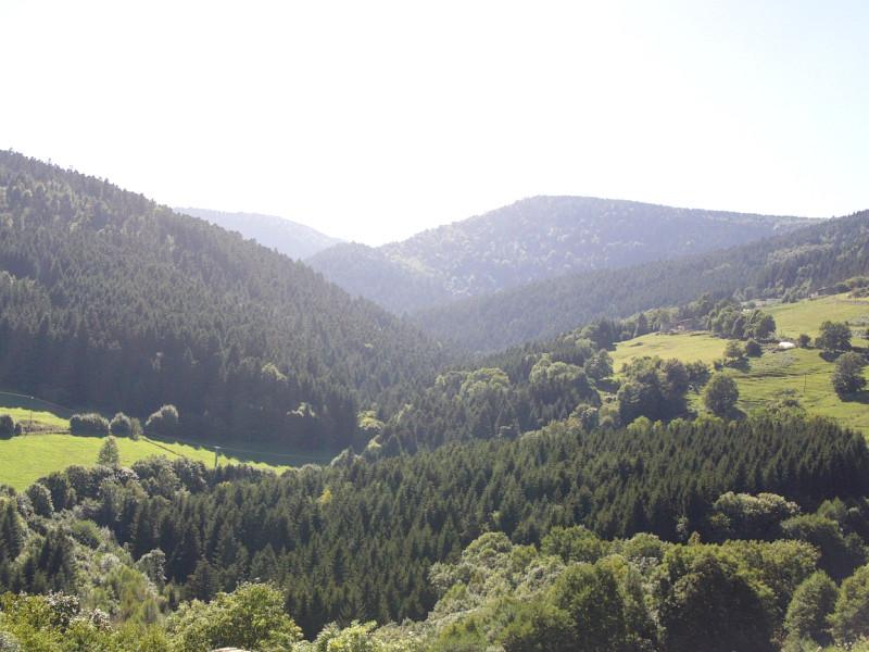 La vallée haute de Chorsin, sur laquelle se situe la cascade