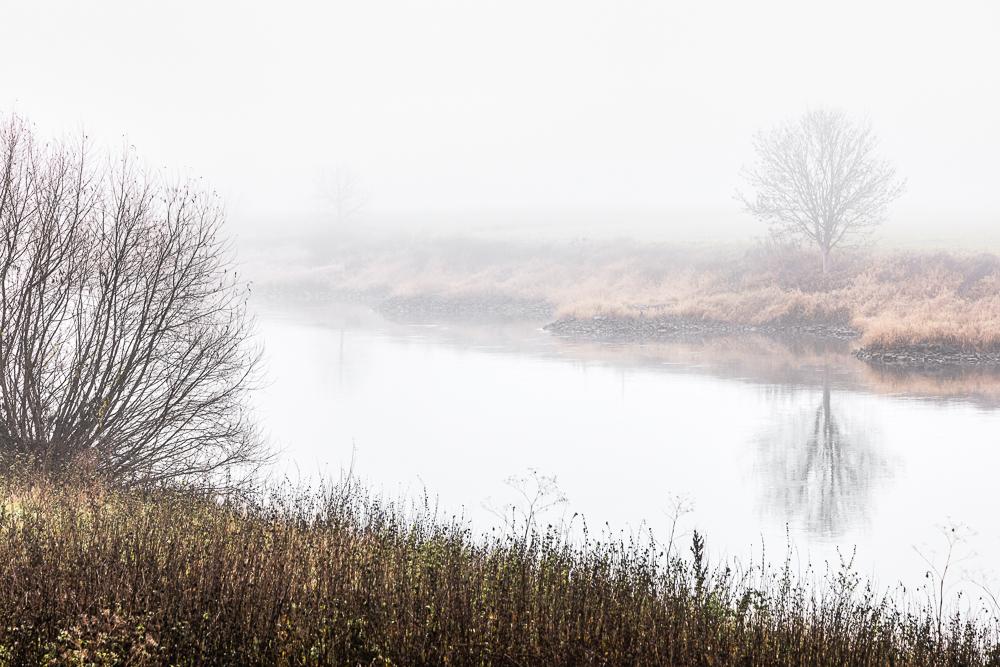 Frühnebel am Weserufer