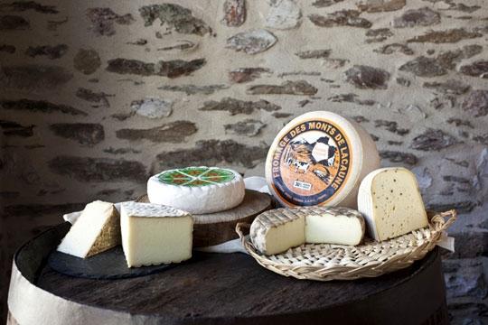 Fromages des Monts de Lacaune