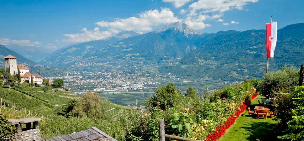 Haidenhof Restaurant Ristorante Buschenschank Osteria contadina Weingut Tenuta Vitivinicola Tscherms Cermes Gourmet Südtirol