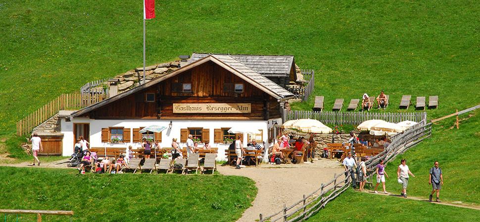 Resegger Alm Malga Baita Resegger Schenna Hirzer Monte Cervia Scena - Gourmet Südtirol
