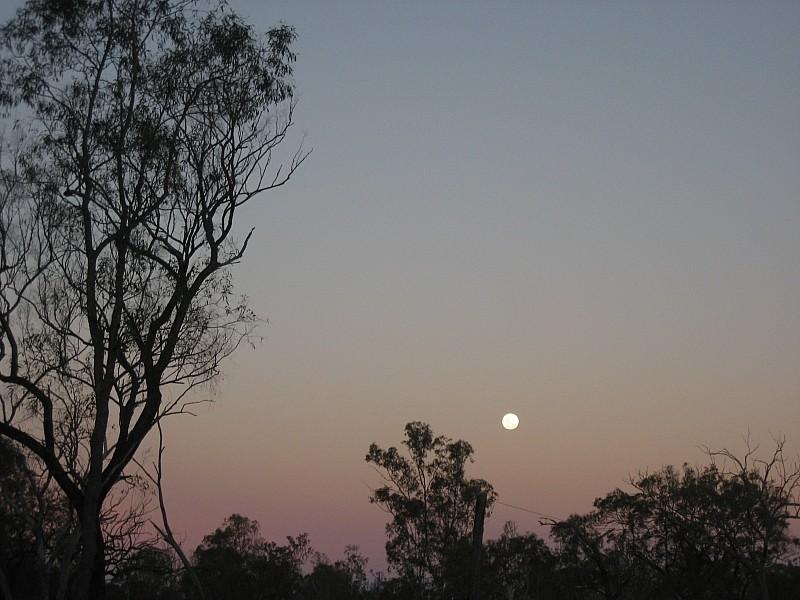 Der Mond geht auf im Outback