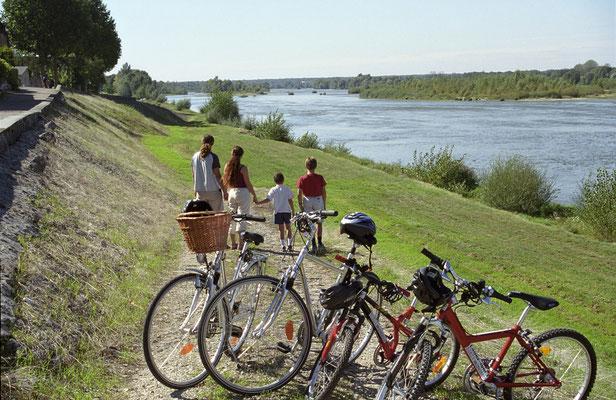 Balade en vélo (Loire à vélo)