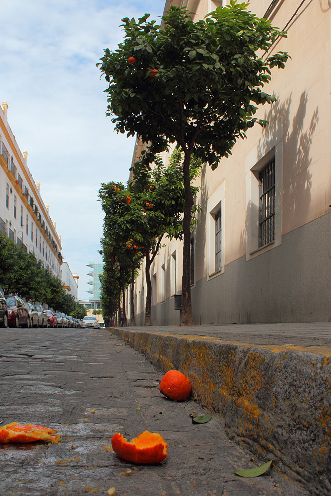 Кадис, Андалусия