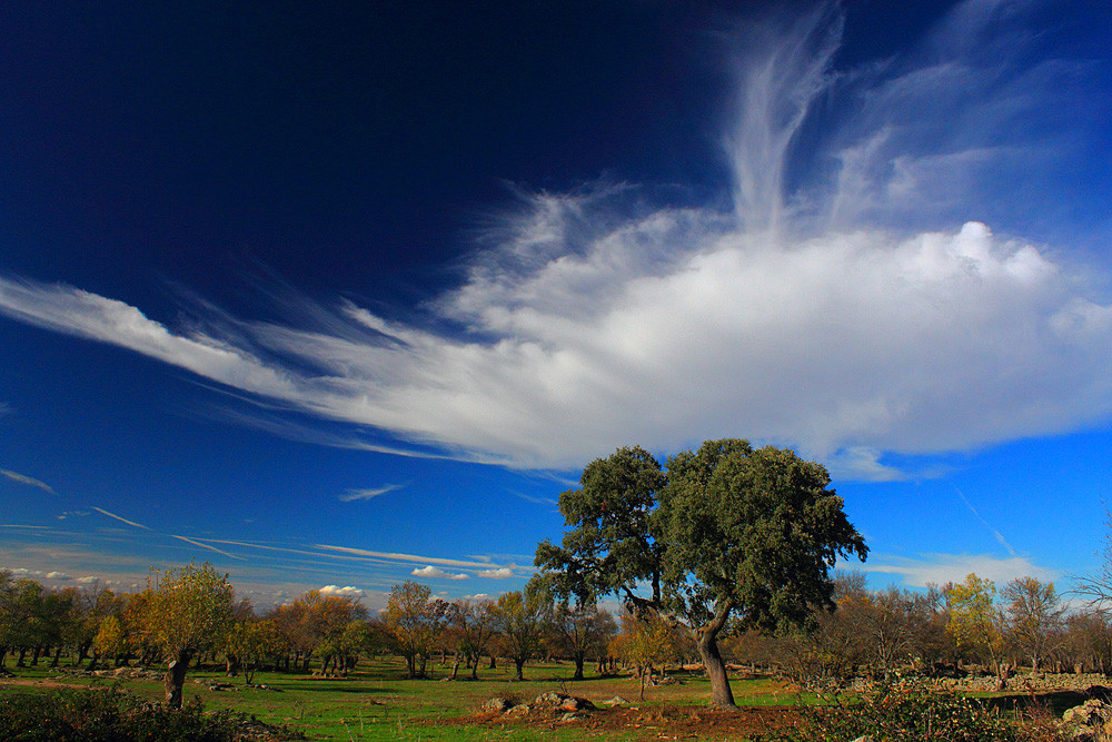 Риофрио, регион Кастилия и Леон