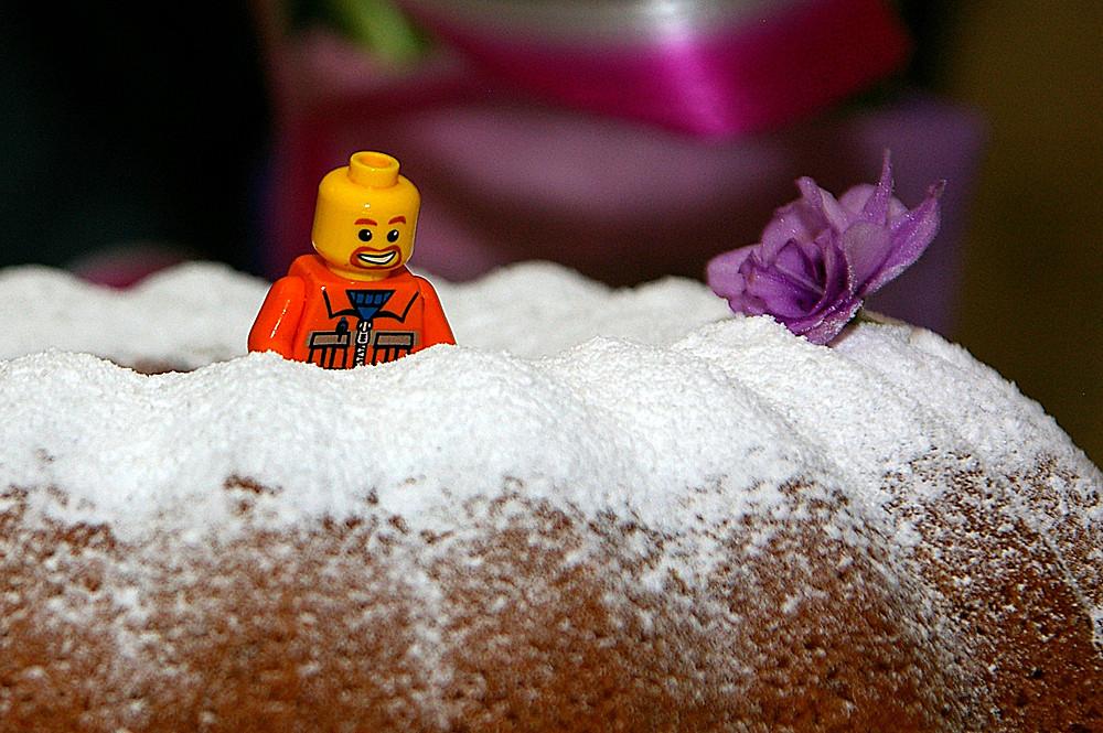 Зэк Алехандро в сахарном раю
