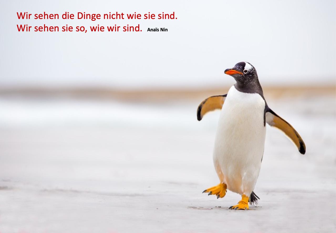 Werte Training I Werte Coaching Birgit Krüger NRW WERTEkoffer ID37 Instructor