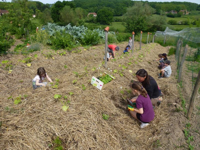 Un jardin pédagogique pour donner le goût aux enfants de prendre soin d'une plante