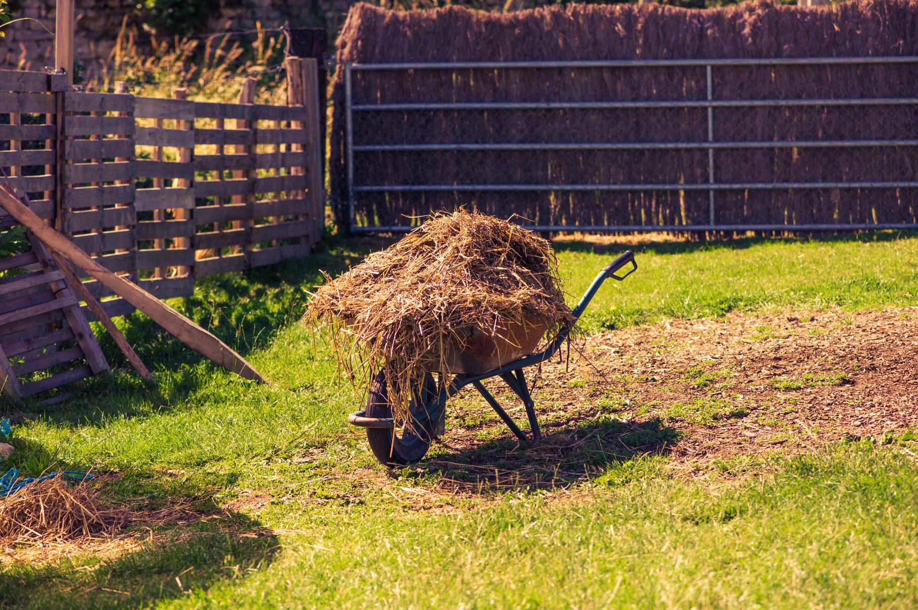 Le paillage en permaculture