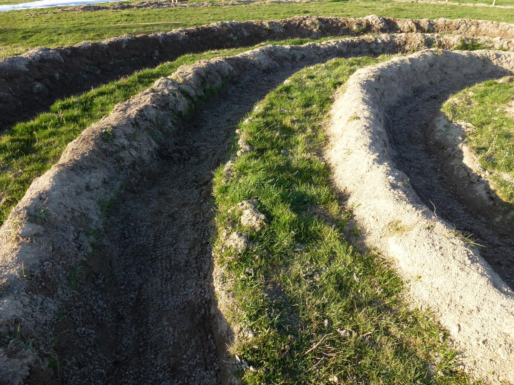 70cm de sentier et 70cm en herbe