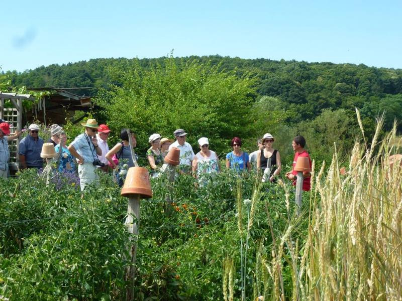 visitez notre jardin pdagogique et dcouvrez la permaculture avec notre guide adrien - Jardin Permaculture