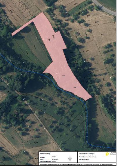 NABU Grundstück/Naturdenkmal-Feuchtgebiet - Üble Gärten 40 ar