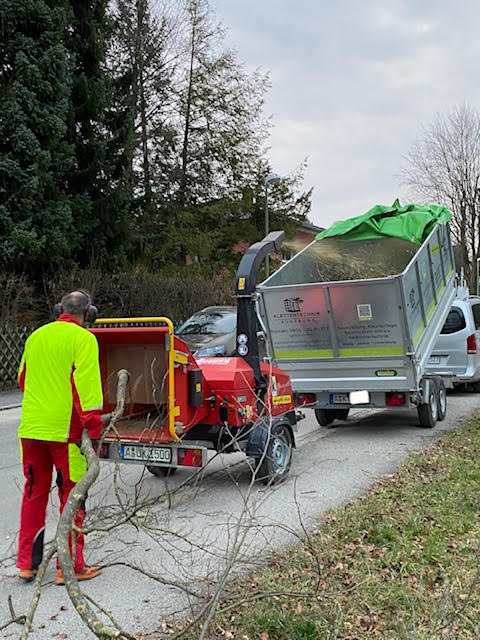 Häckselarbeiten nach erfolgter Baumpflege eines Patrizier-Gartens in der Augsburger Innenstadt