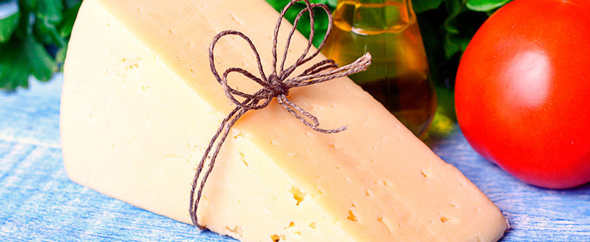 Käseschule