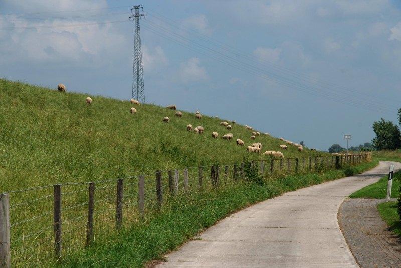 Ems-Deichlandschaft an der Deutschen Fehnroute
