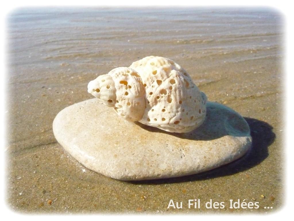 Plage La Faute sur Mer (Vendée) - Octobre 2011