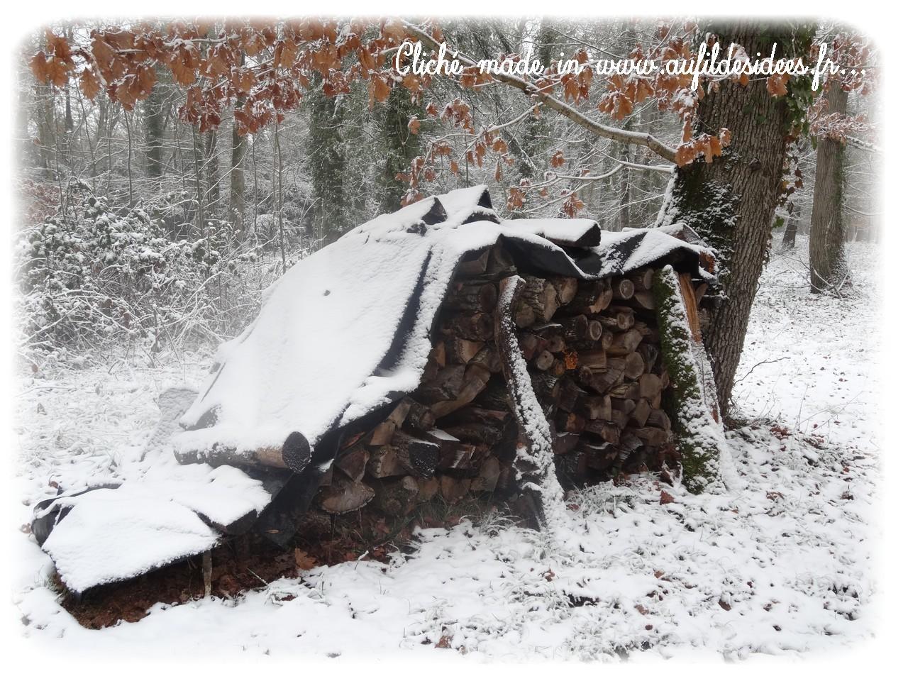 """Cliché made in """"Au Fil des Idées"""" Janvier 2013"""